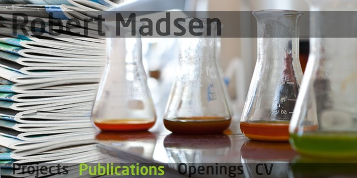 DTU Chemistry - Robert Madsen - Publications